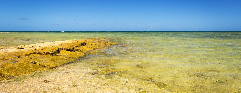 Sceniskt Nya Kaledonien hav fotografering för bildbyråer