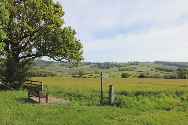 Sceniskt vårlandskap med träbänk- och vandringsledtecknet arkivfoto