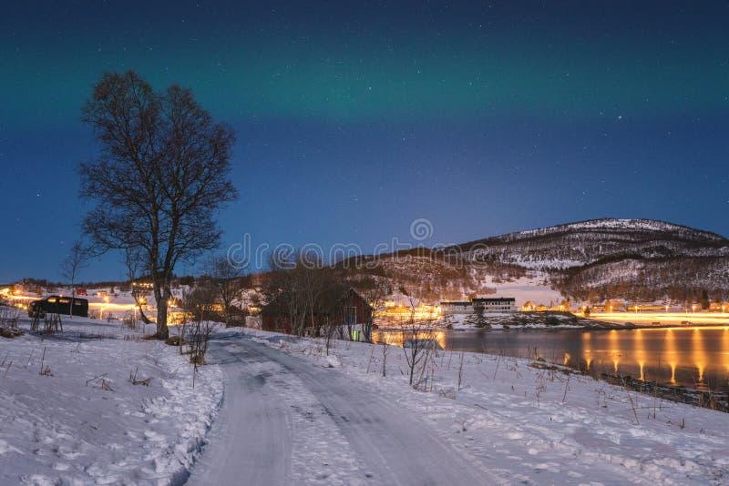 Sceniskt vinterlandskap med nordliga ljus, norrsken i natthimmel, Lofoten öar, Norge royaltyfria bilder