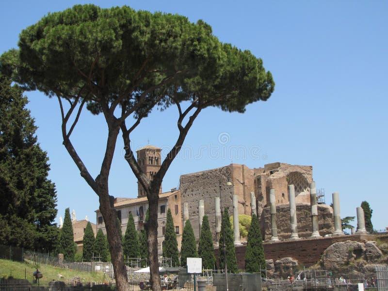 Sceny wśród miasta Rzym, Włochy zdjęcie stock
