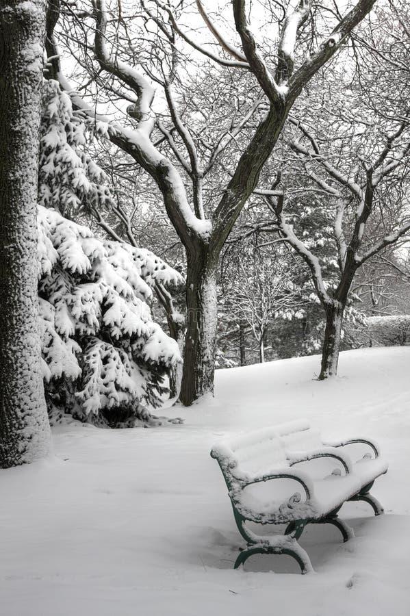sceny zima zdjęcie stock
