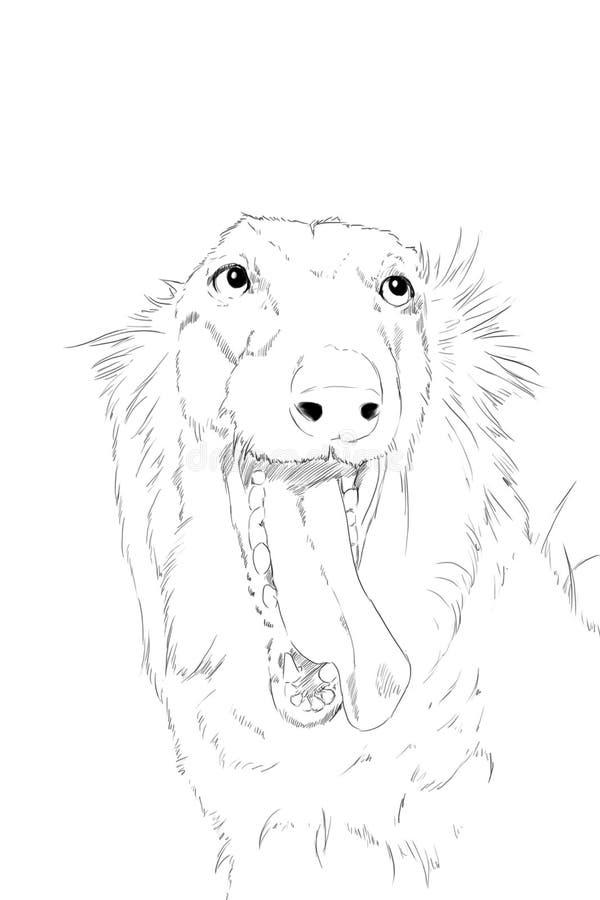 Scetch del cane dei borzoi, disegno a matita fotografia stock