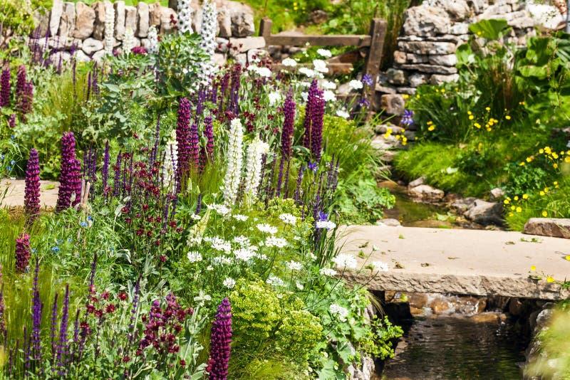 Schöne Gartenlandschaft mit weißen purpurroten Blumen und Strom stockfotografie