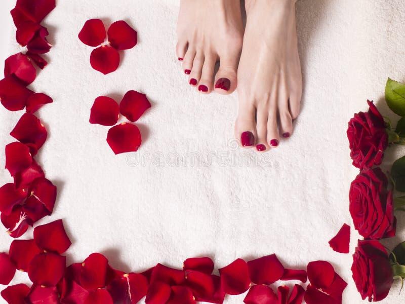 Schöne weibliche Füße mit einer roten Pediküre in einem Bad mit den Salz- und Rosenblumenblättern Badekurort und Hautpflegekonzep stockfoto