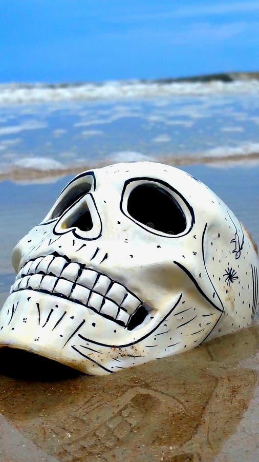 Schädel auf Strand lizenzfreie stockfotografie