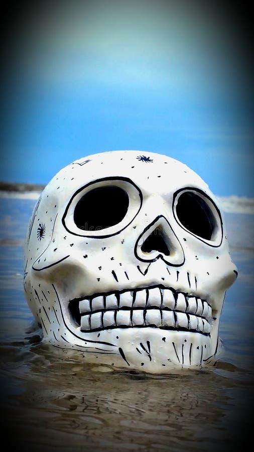 Schädel auf Strand lizenzfreie stockfotos