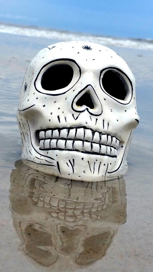 Schädel auf Strand lizenzfreie stockbilder