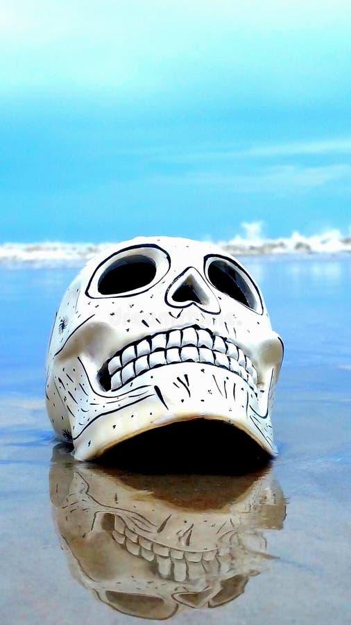 Schädel auf Strand stockbild