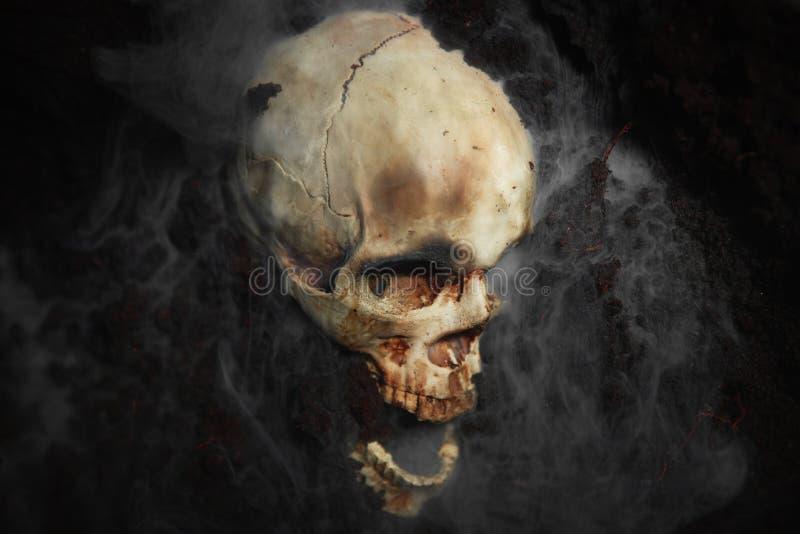 Schädel eines toten Mannes auf dem Boden stockfotos