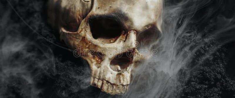 Schädel eines toten Mannes auf dem Boden lizenzfreies stockfoto