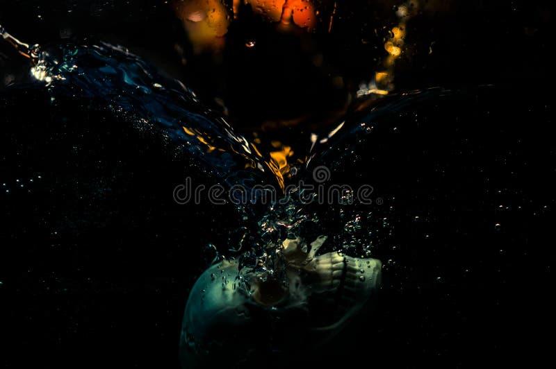 Schädel im Wasser stockbilder