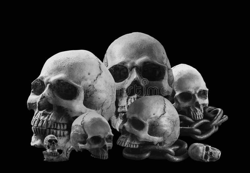 Schädel mit einem Schwarzweiss-Bild lizenzfreie stockfotos