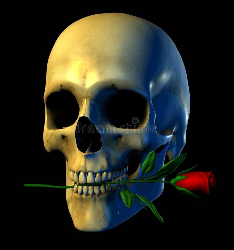 Schädel mit einer Rose - enthält Ausschnittspfad lizenzfreie abbildung