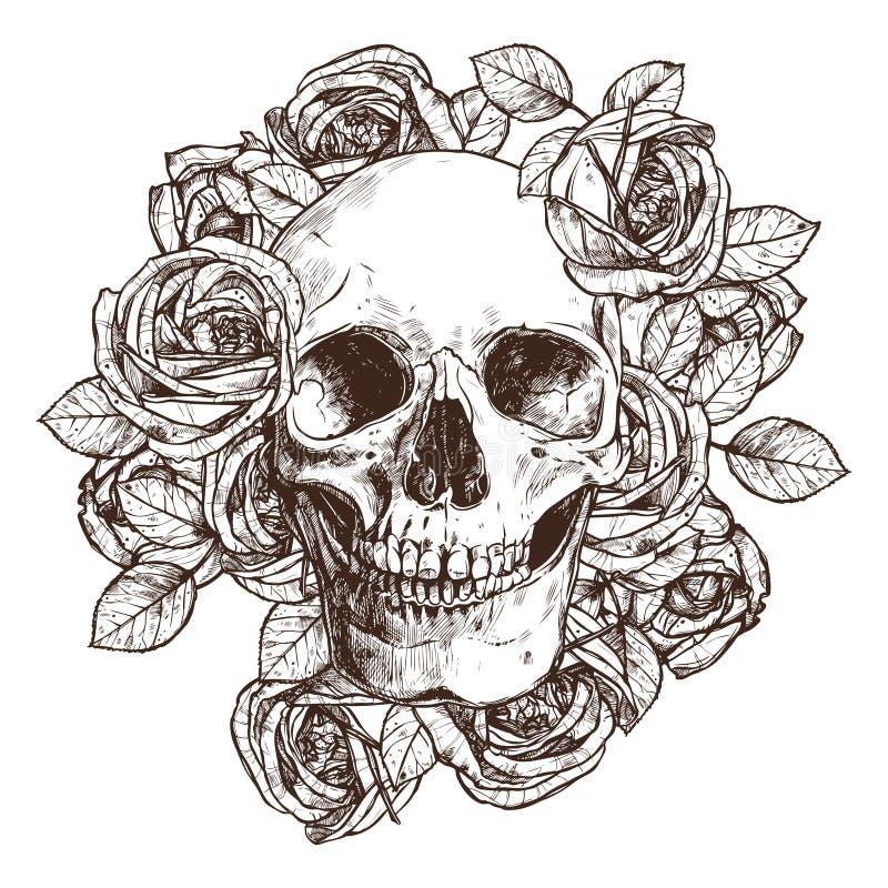 Schädel und Rosen in Skizze Art Hand gezeichnete Abbildung lizenzfreie abbildung
