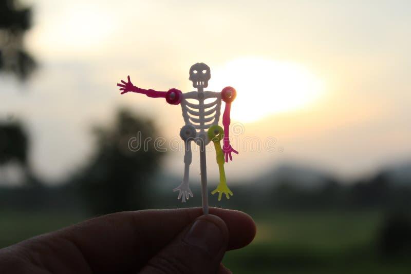 Schädelmann an Hand im Sonnenuntergang stockfotografie