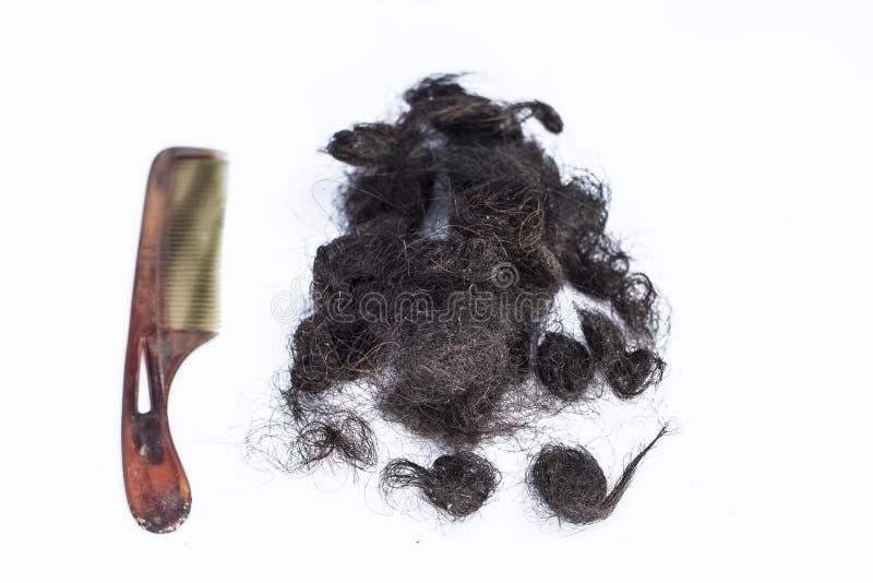 Schädigendes Haar lokalisiert auf Weiß mit einem Haarkammkonzept von sterbenden Haaren lizenzfreies stockbild