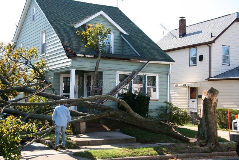 Schädigendes Haus vom Baum stockbilder