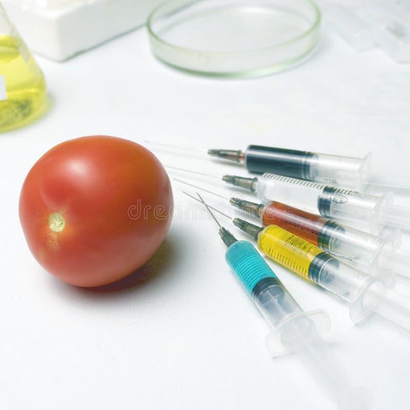 Schädlingsbekämpfungsmittel und Nitrate werden in rote Tomaten mit einer Spritze eingespritzt GVO-Konzept und genetisch verändert lizenzfreie stockfotografie
