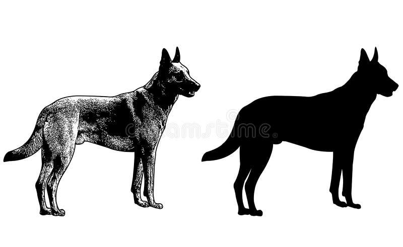 Schäferhundhundeschattenbild und Skizzenillustration lizenzfreie abbildung