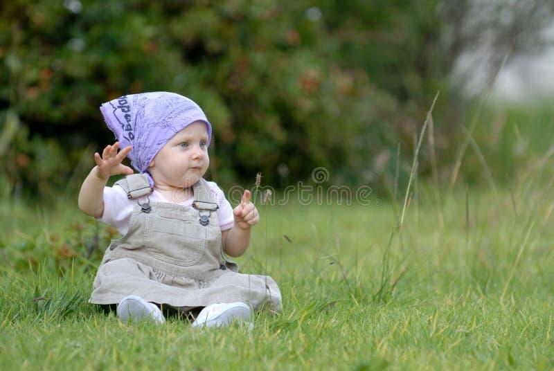 Schätzchen auf dem Gras lizenzfreies stockfoto