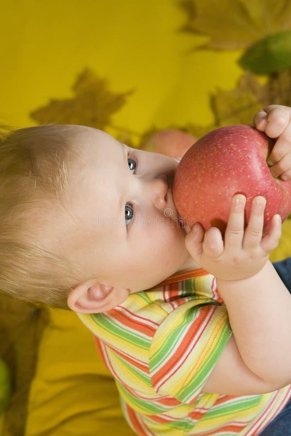 Schätzchen, das Apfel isst lizenzfreie stockbilder