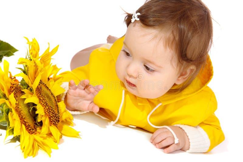 Schätzchen, das Sonnenblumen betrachtet stockbilder