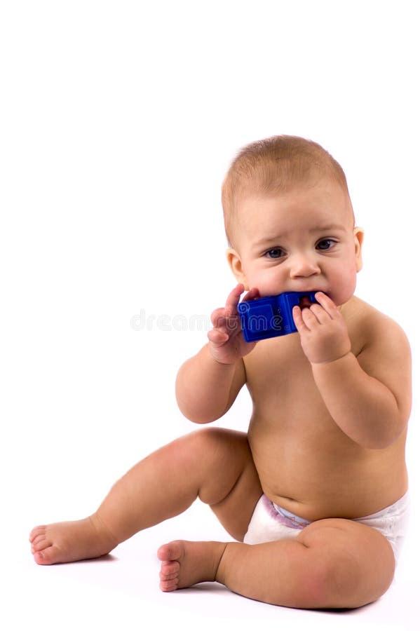 Schätzchen, das Spielzeug kaut lizenzfreie stockfotografie