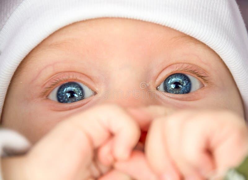 Schätzchen mit blauen Augen lizenzfreie stockbilder