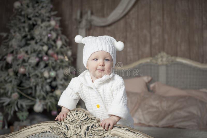 Schätzchen- und Weihnachtsbaum lizenzfreie stockbilder