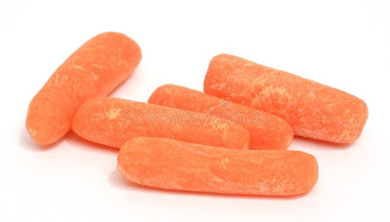 Schätzchenkarotten stockbild