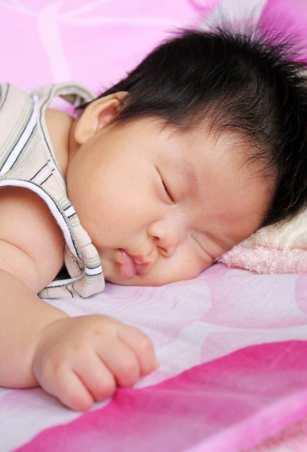 Schätzchenschlafen stockbilder