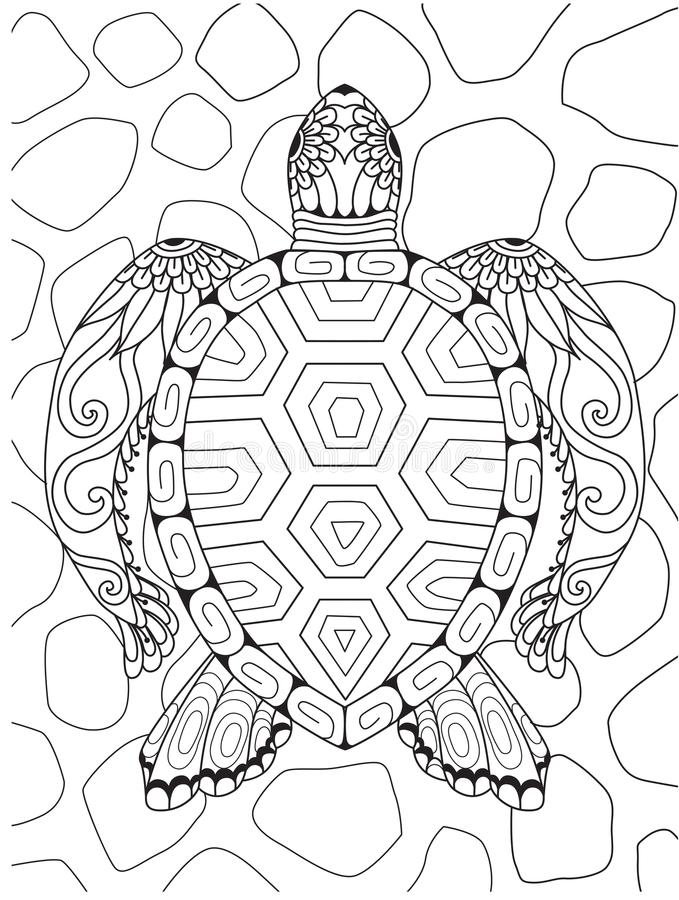 Schéma de belle tortue pour l'élément de conception Illustration de vecteur illustration stock