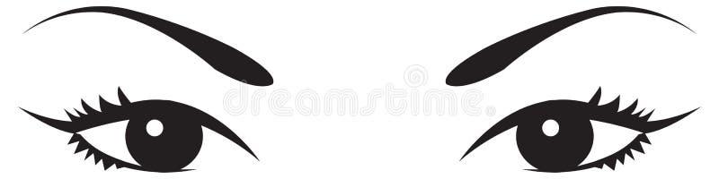 Schéma vecteur des yeux et des sourcils d'une femme illustration de vecteur