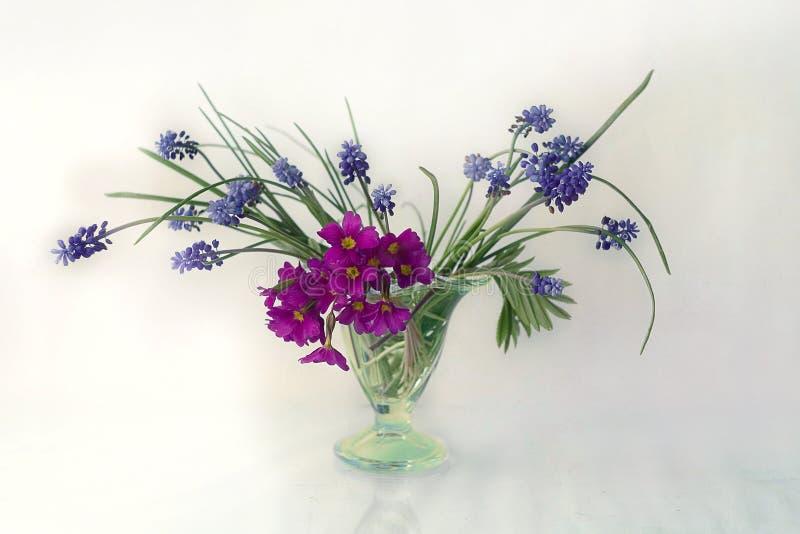schön, Frühlingsblumenvase lokalisiert auf hellem Hintergrund lizenzfreie stockfotos