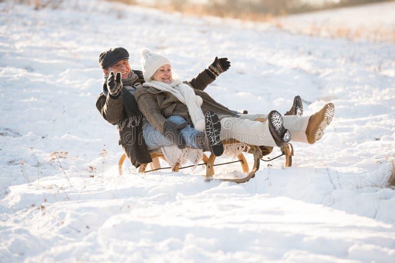Schöne ältere Paare auf dem Schlitten, der Spaß, Wintertag hat lizenzfreies stockfoto