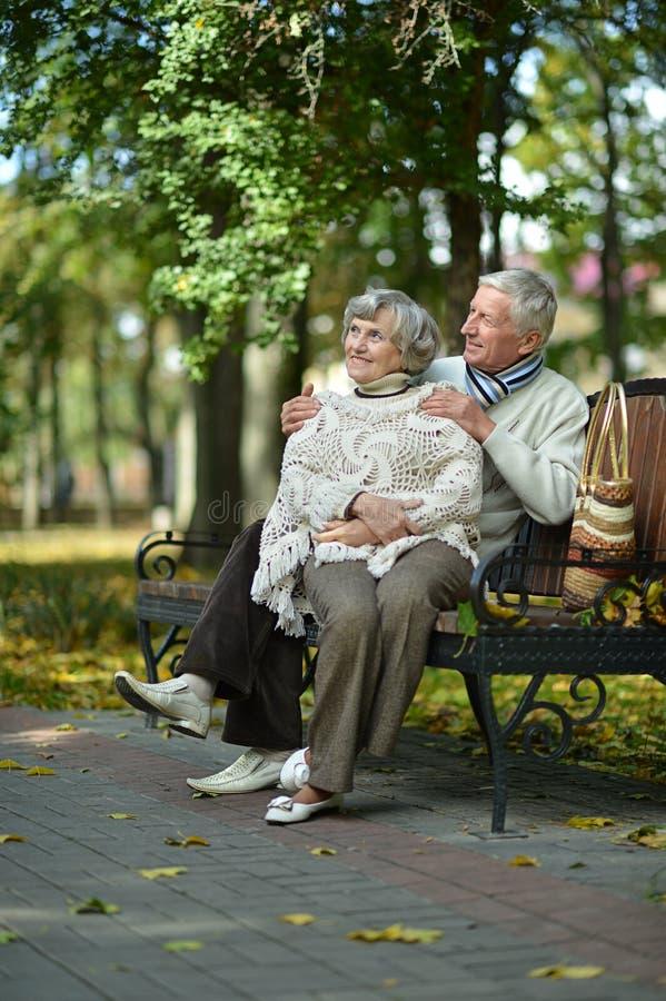 Schöne Ältestpaare stockbilder