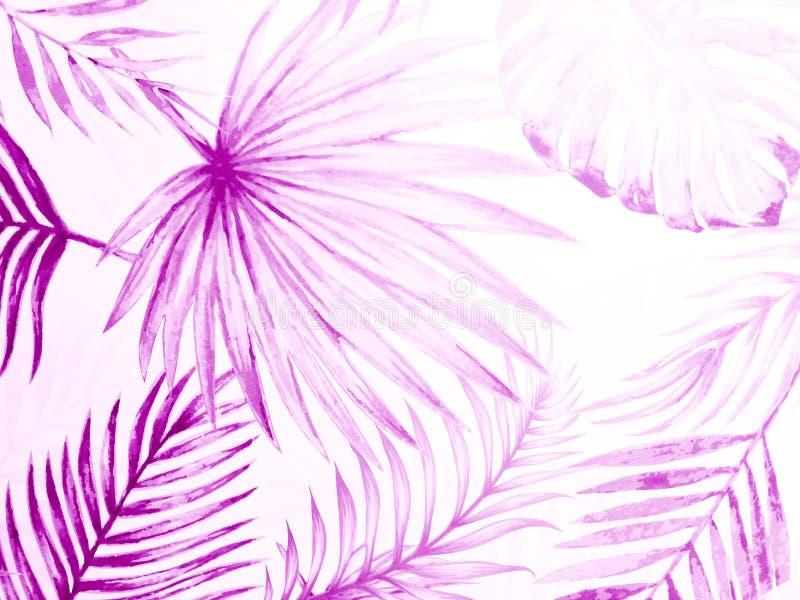 Schöne abstrakte dunkel-rosa violette Blätter auf weißem Grund mit weißem lila Laub auf dunkler Textur stockfotos