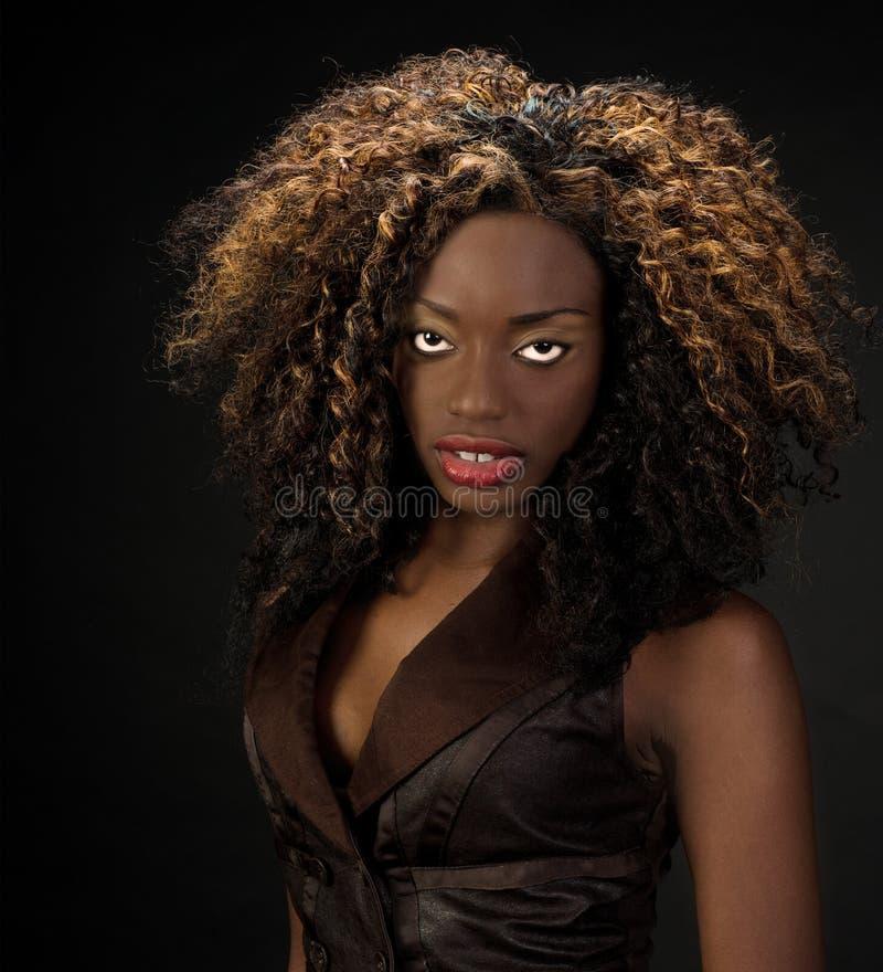 Schöne Afroamerikanerfrau mit den herrlichen Lippen und dem großen Haar stockfotografie