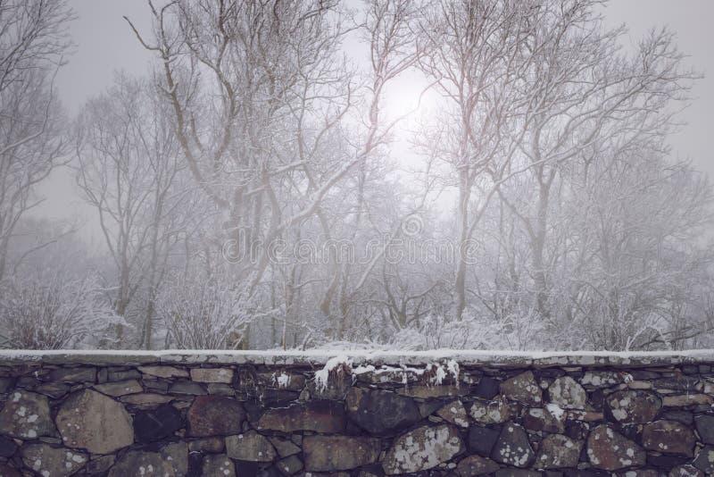 Schöne alte Steinwand vor nebelhaftem Winterwald lizenzfreie stockfotografie