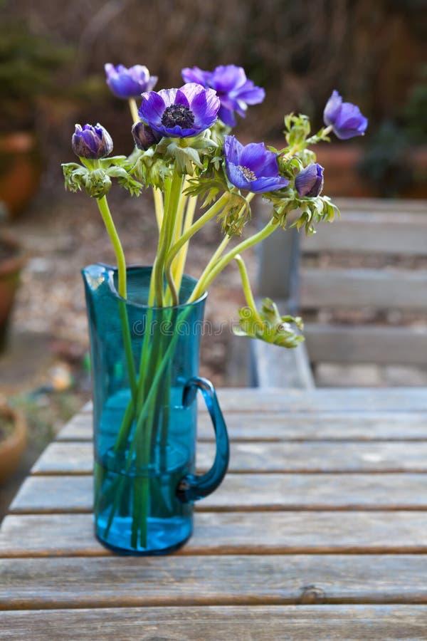 Schöne Anemonenblumen im Glasvase auf dem Tisch stockfotos