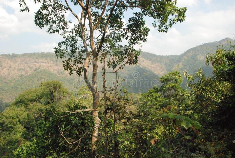 Schöne Ansicht der Wasserfälle nahe dem Fluss Kwai in Thailand lizenzfreies stockbild