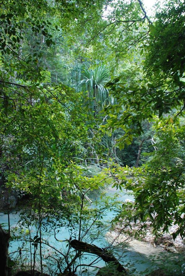 Schöne Ansicht der Wasserfälle nahe dem Fluss Kwai in Thailand stockfotos