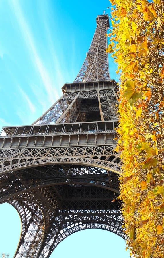 Schöne Ansicht des gelben Herbstes treibt mit dem Eiffelturm im Hintergrund in Paris Blätter stockfoto