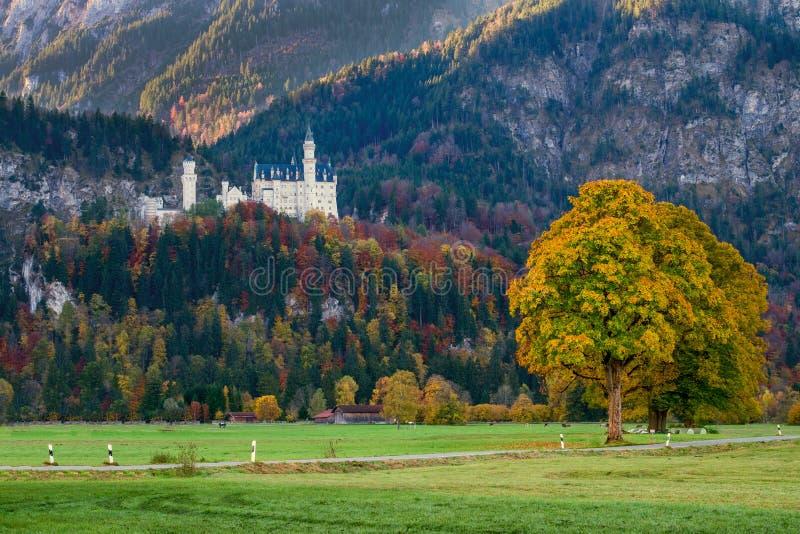 Schöne Ansicht des Neuschwanstein-Schlosses im Herbst lizenzfreies stockbild