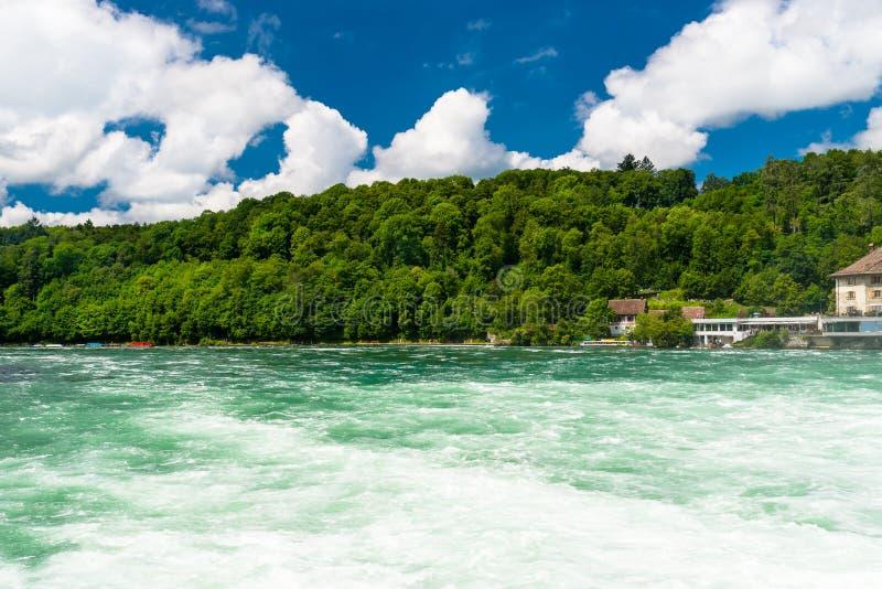Schöne Ansicht des Rheins im Türkis, an der Quelle in der Schweiz, gerade hinter dem größten Wasserfall in Europa lizenzfreie stockfotos
