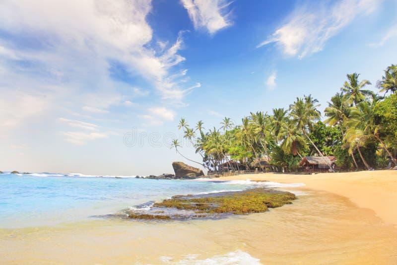 Schöne Ansicht des tropischen Strandes von Sri Lanka lizenzfreies stockfoto