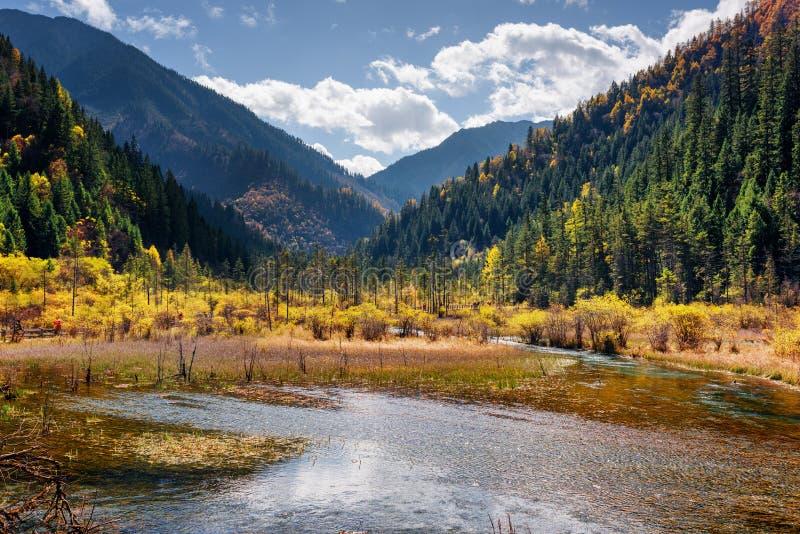 Schöne Ansicht von einem Halbsumpfsee unter bewaldeten Bergen stockbilder