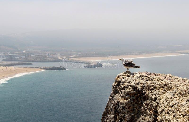 Schöne Ansicht von Nazare, Portugal lizenzfreie stockbilder