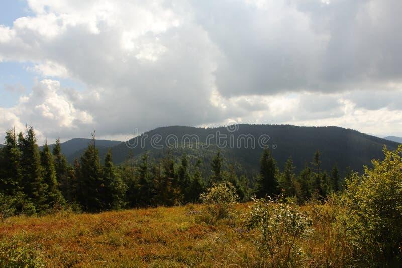 Schöne Ansichten der Karpaten-Berge lizenzfreie stockfotografie