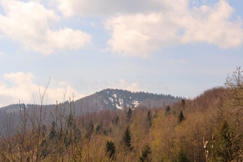 Schöne Ansichten der Karpaten-Berge lizenzfreie stockbilder